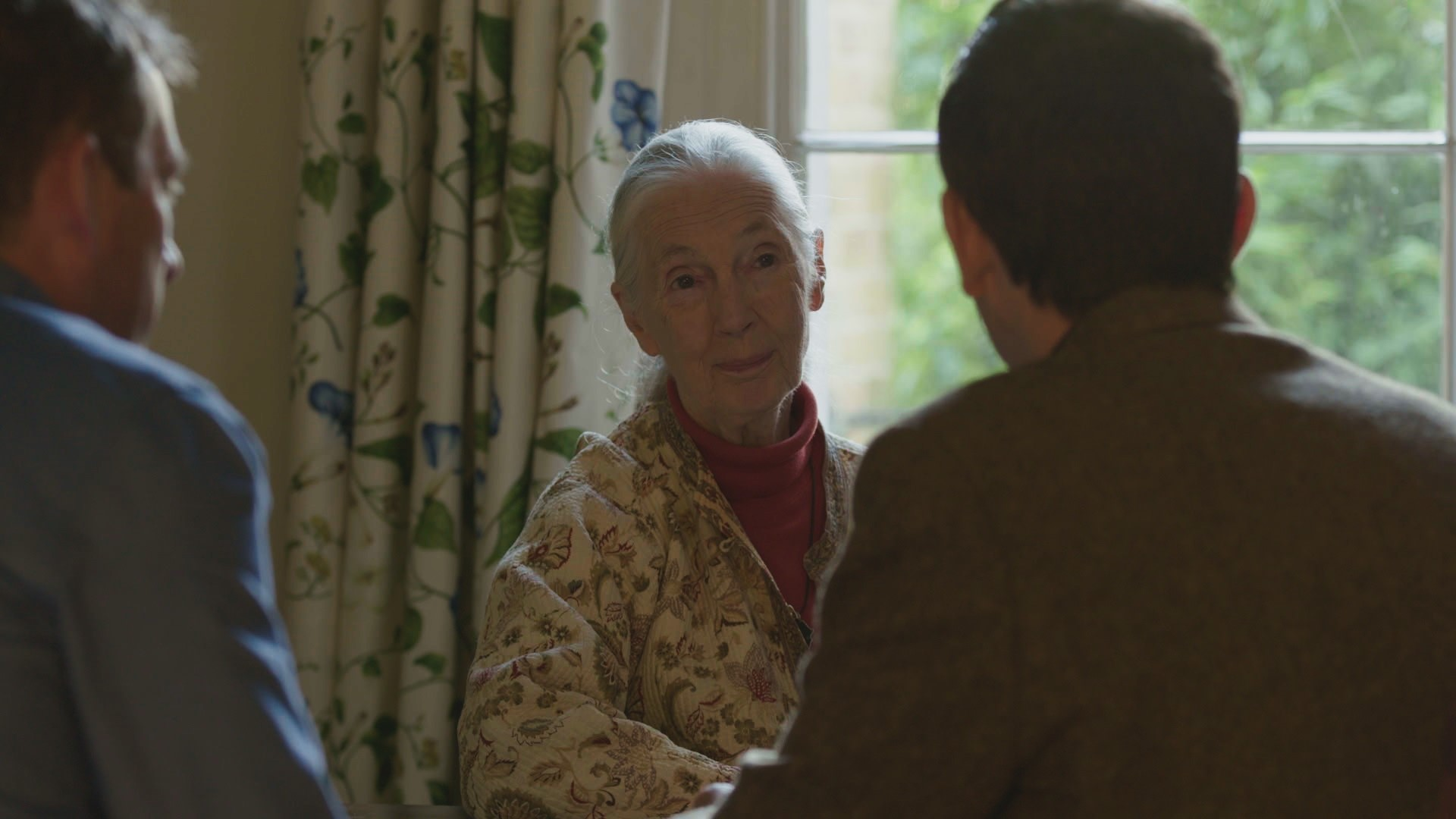 Jane Goodall with Ard Louis and David Malone