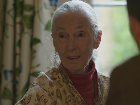 Jane Goodall with Ard Louis